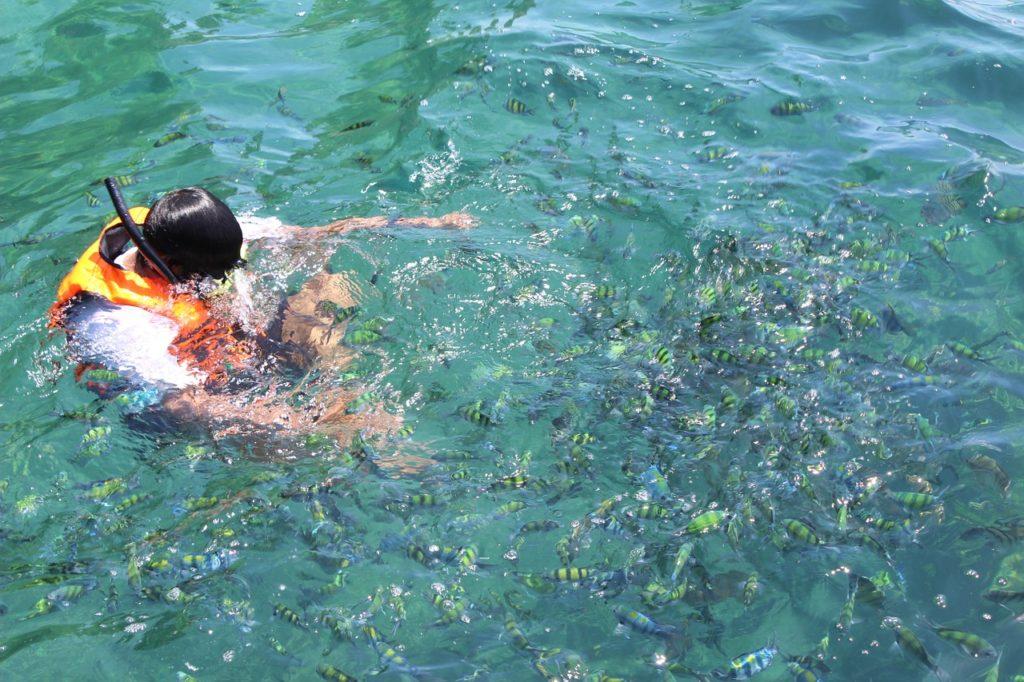diving-1127105_1280