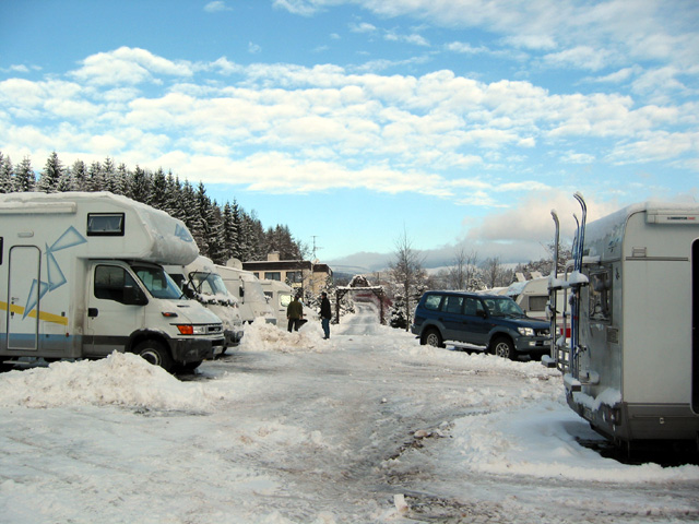 lisci-farma-zimni-camp-03
