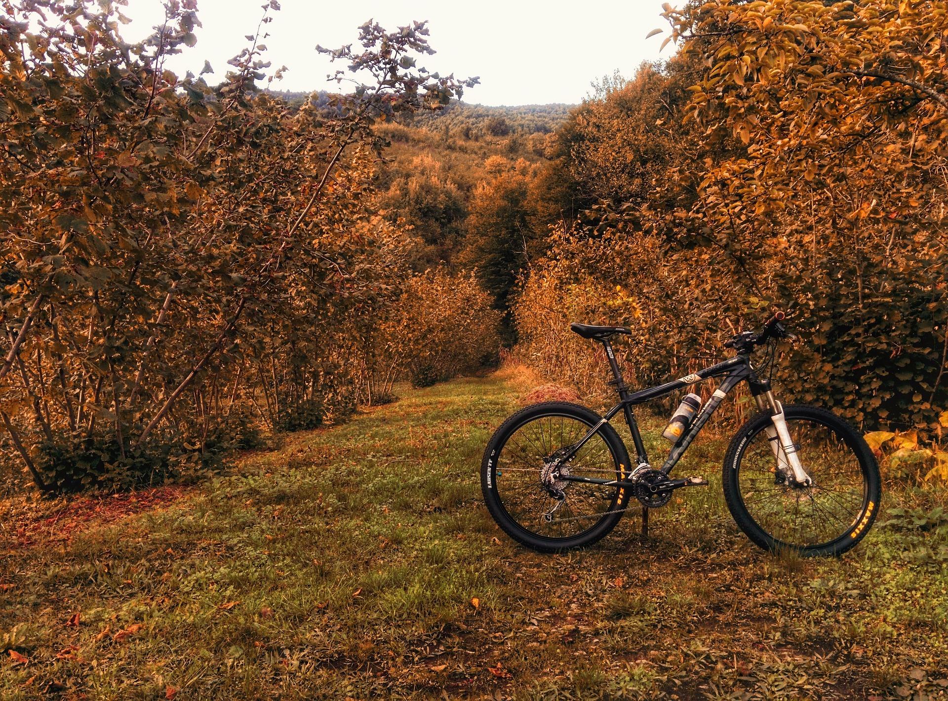 bike-1031728_1920